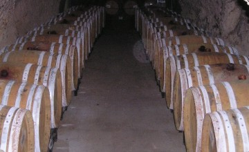 Open Cellar in Florence