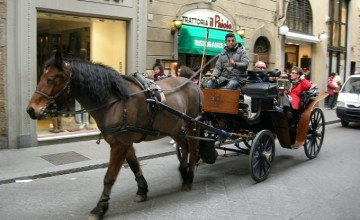 A Fiaccheraio and his horse