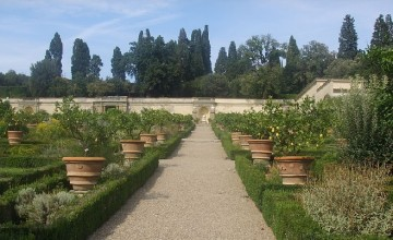 The Garden of the Villa Medicea di Castello
